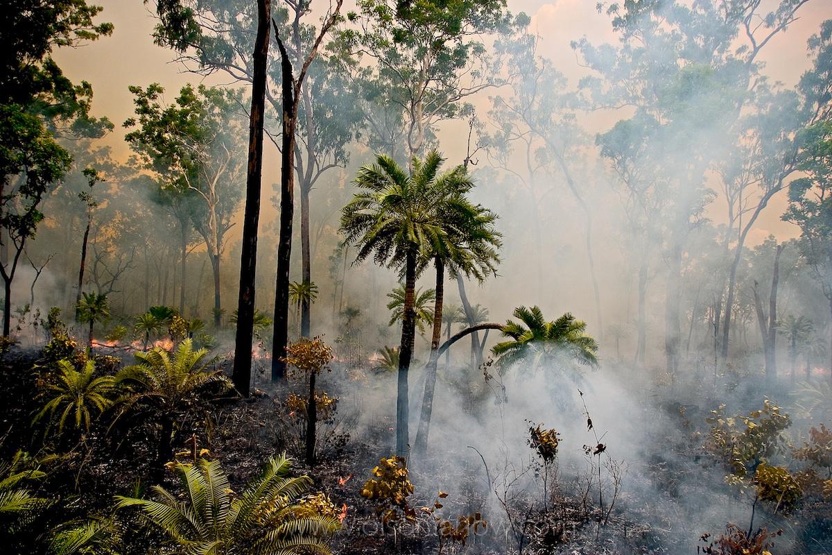 Australia Monsoon, National Geographic 4