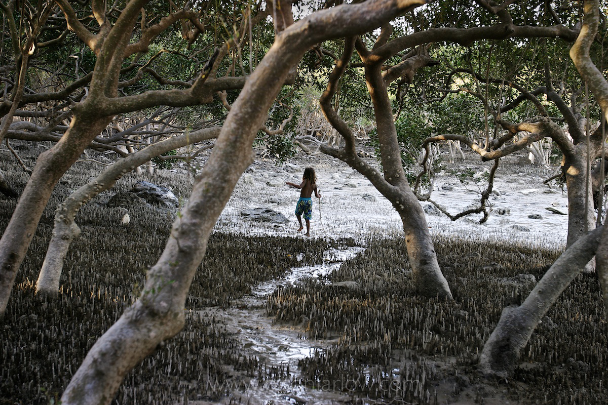 Australia Monsoon, National Geographic 24
