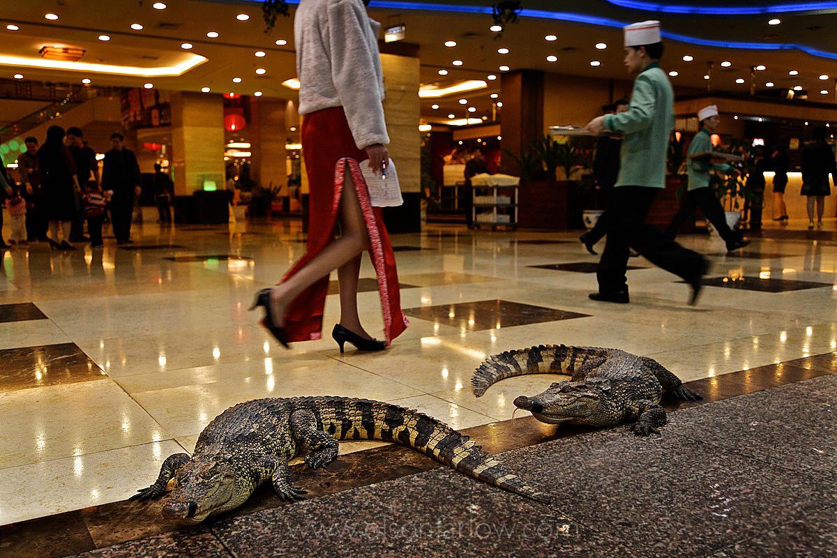 Crocs on the Floor Outside Guangzhou Restaurant
