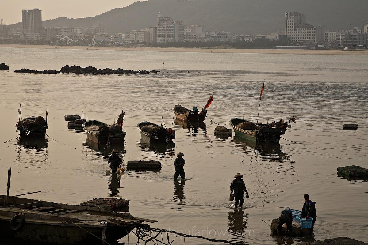 Jellyfish Fishery along China's South Coast