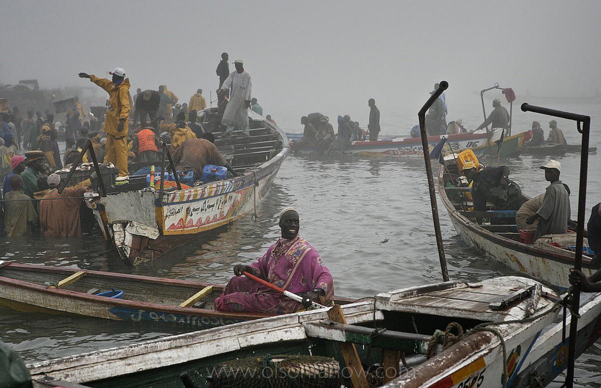 Fishermen in Senegal Bring their Catch to Freezer Trucks to go to EU