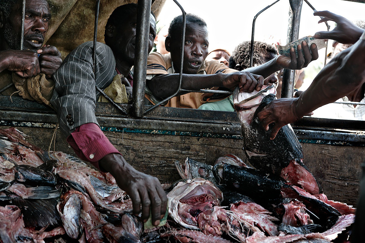 Selling fish carcasses in Tanzania | Africans are Left With the Bones