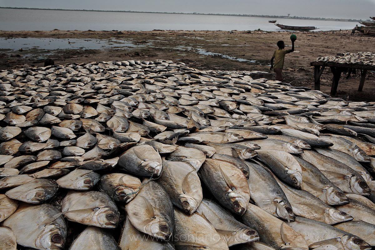 Drying Fish Where the Sahara Meets the Sea | St. Louis Senegal
