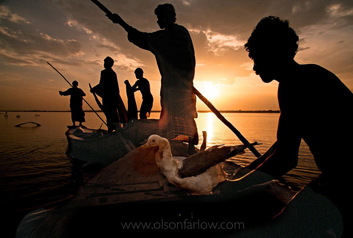 Five Bird Hunters, Indus River | Mohenjo Daro, Pakistan