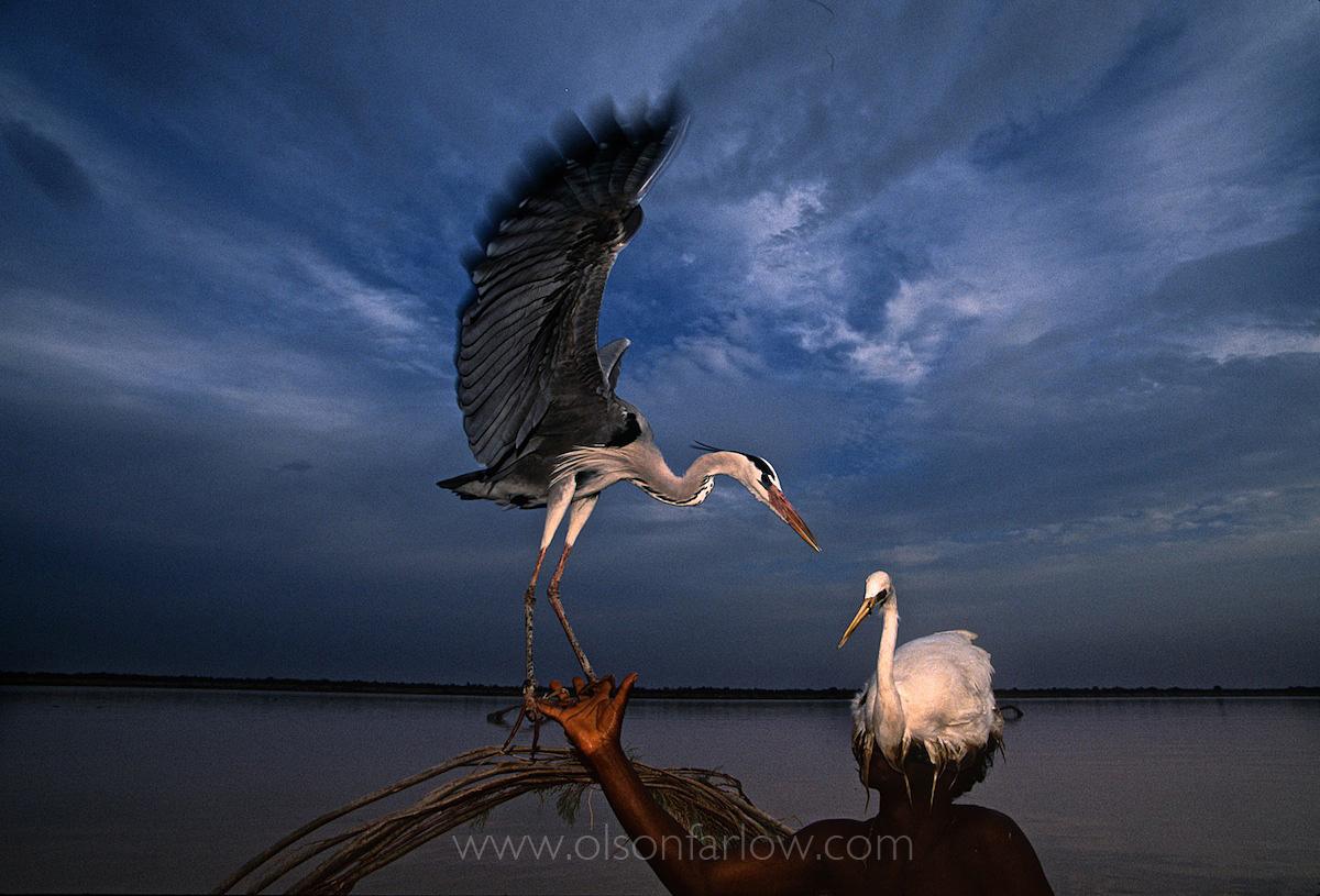 Bird Hunter With Decoy, Indus River | Mohenjo Daro, Pakistan