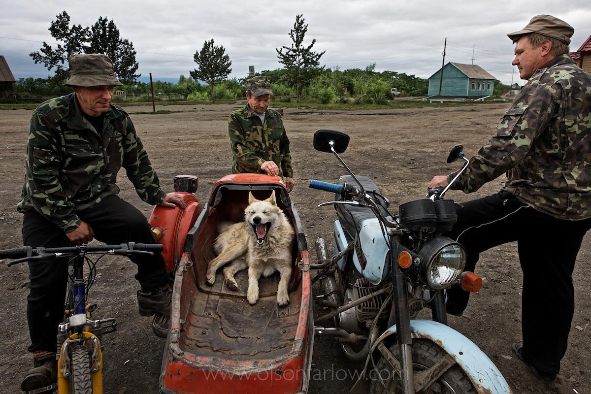 Dog Days in Kamchatka
