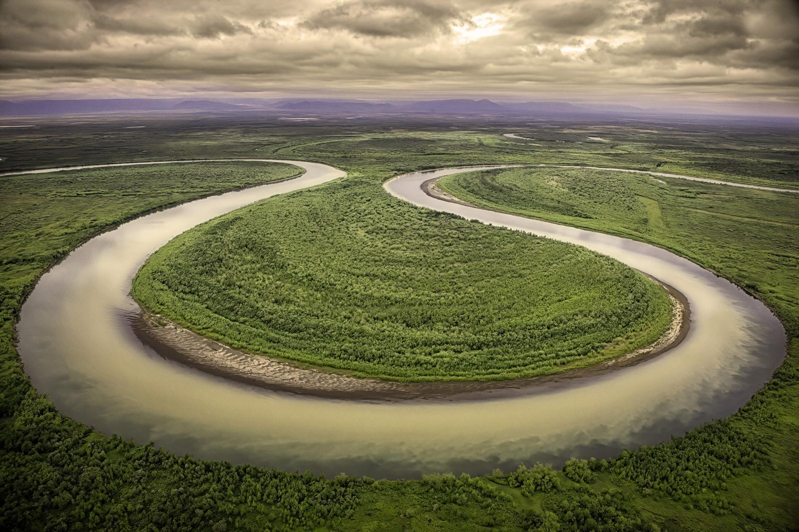 Salmon Stream in Kamchatka
