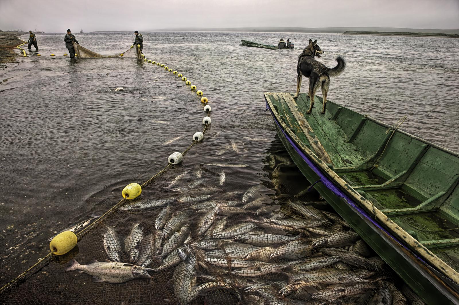 Fishing Brigade on the Bolshaya River