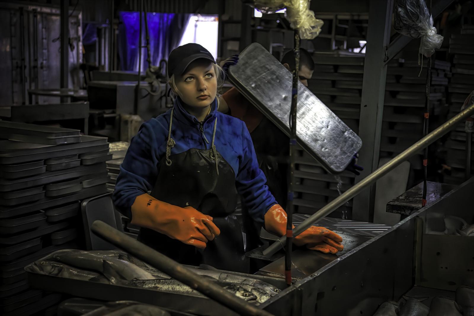 Kamchatka's Largest Fish Processing Plant