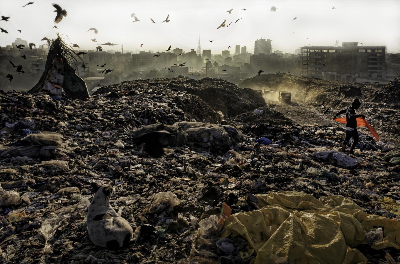 Plastic Workers Live in Landfills