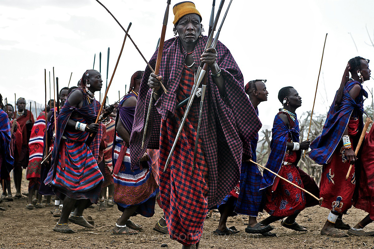 Maasai, Lost in the Stampede, National Geographic 21