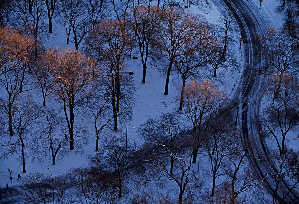 Graphic view looks down on tiny figure dwarfed by winter trees along a road after snowfall.