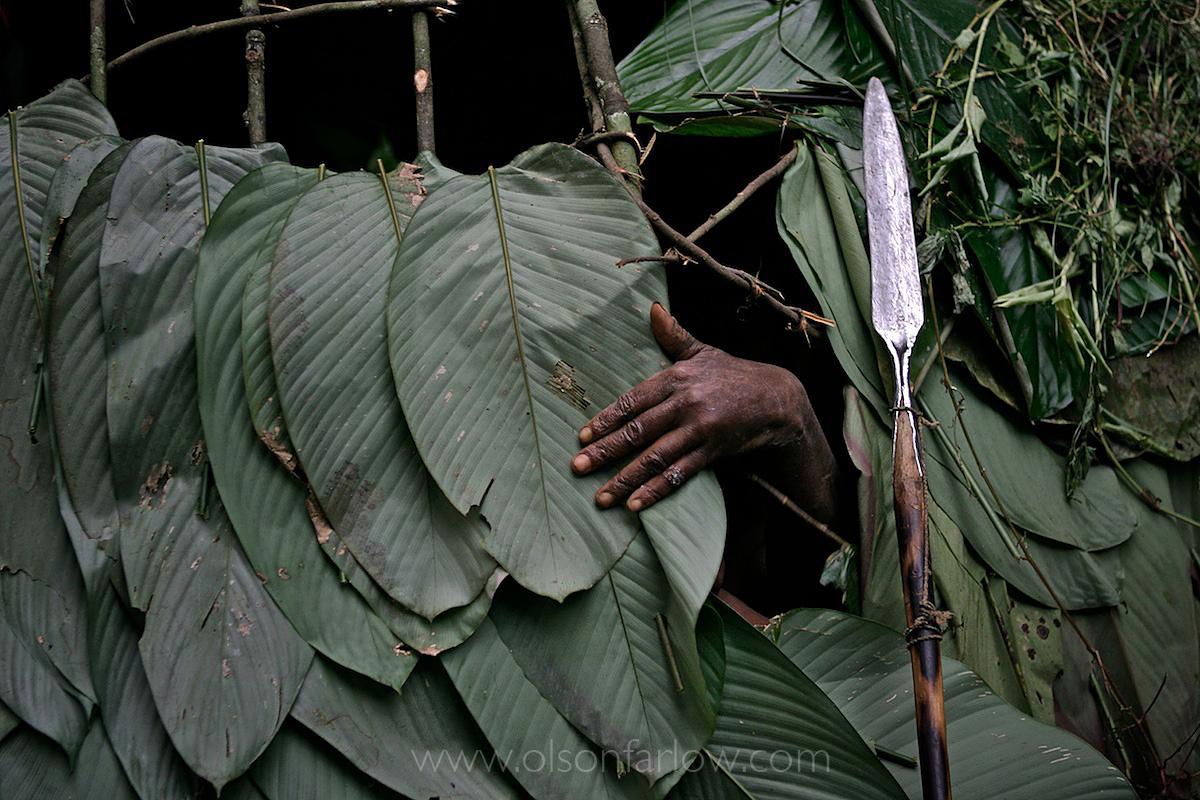 Pygmy Leaf Hut – Double Leaf Construction | DR Congo