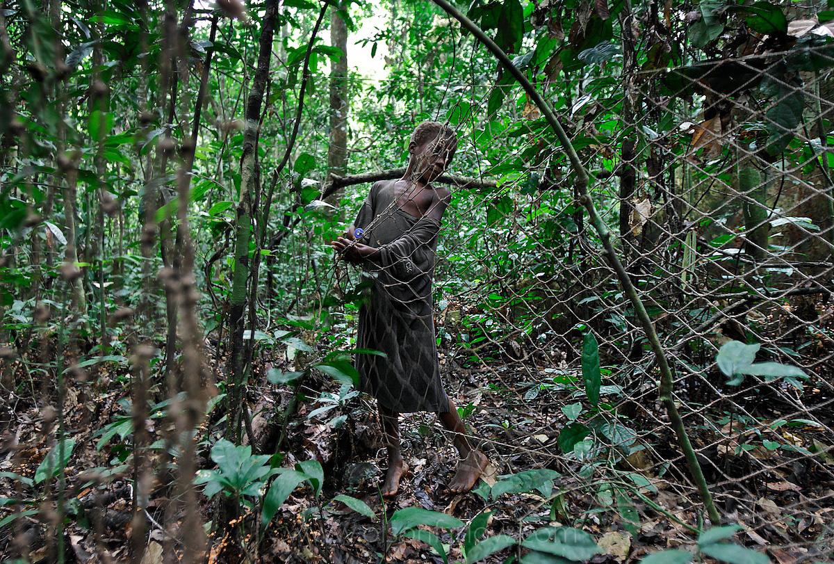 Pygmy Sets Hunting Net | Ituri Forest, Democratic Republic of Congo
