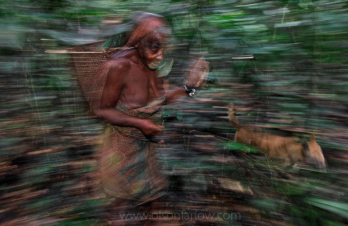 Pygmy Woman Carries Fire in Ituri Forest | DR of Congo