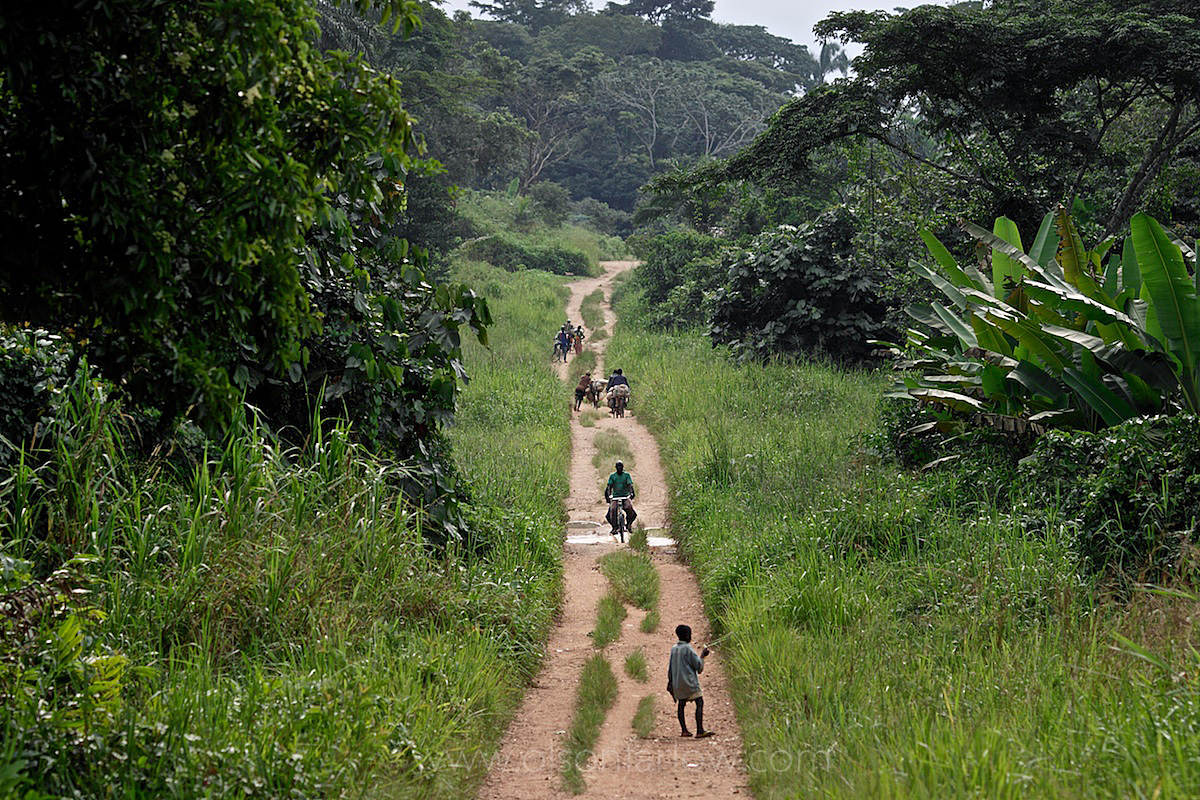 Trans-African Highway | Main East West Highway in DR Congo