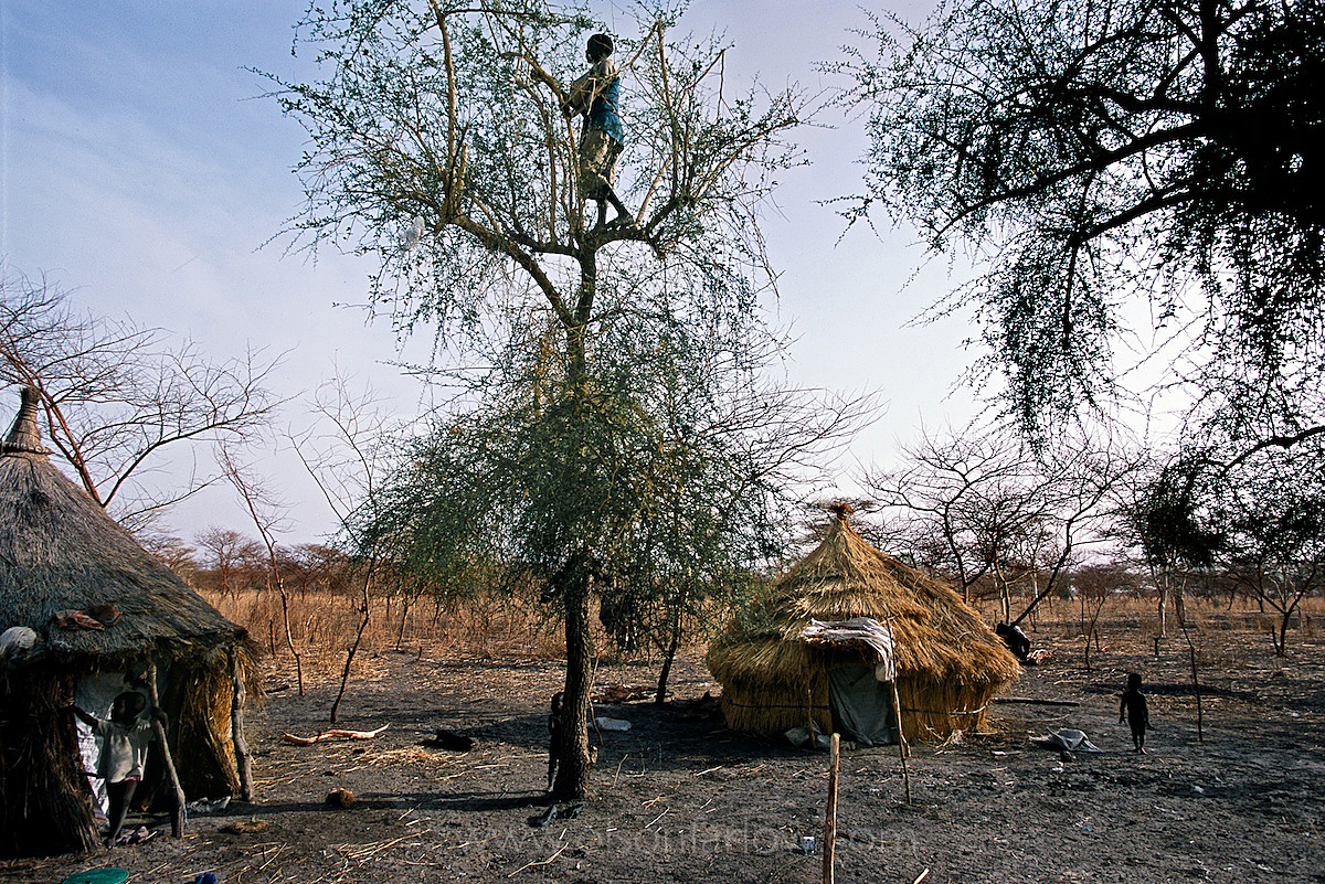 Ruweng County War Zone | Only Leaves to Eat | South Sudan