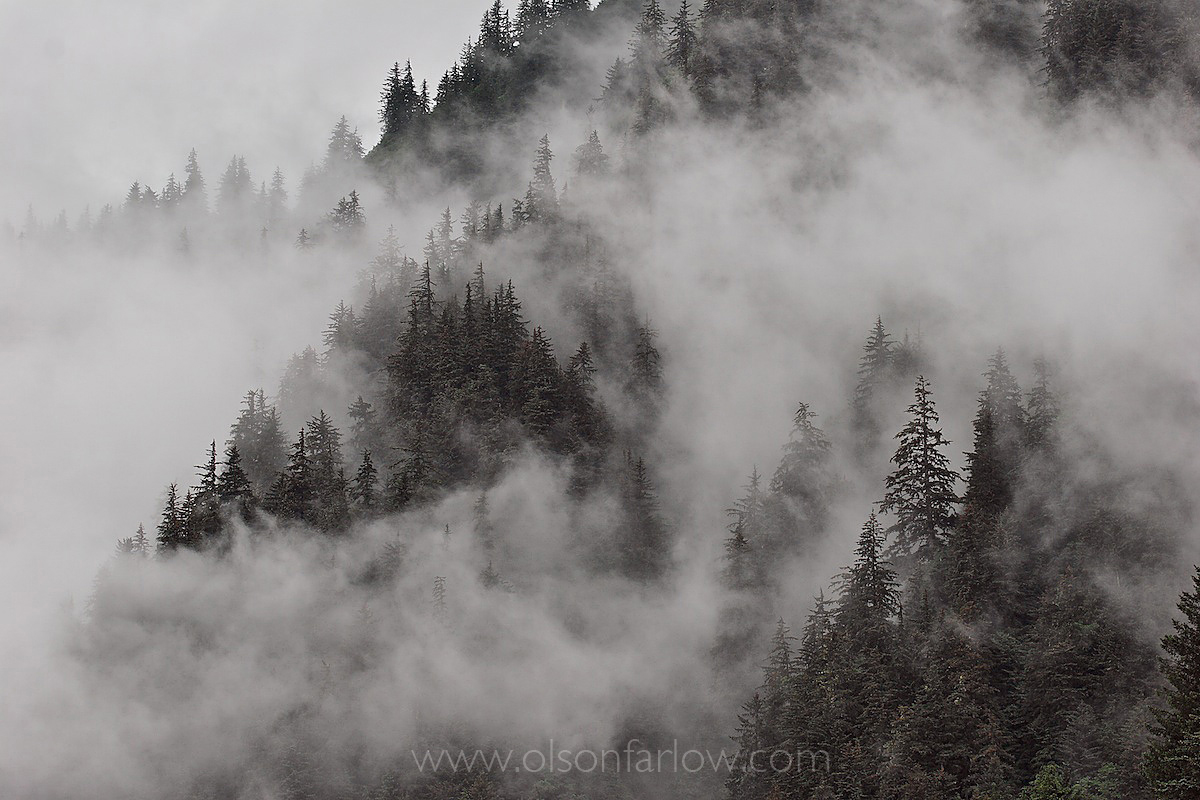 Fog Shrouds Coastal Alaska