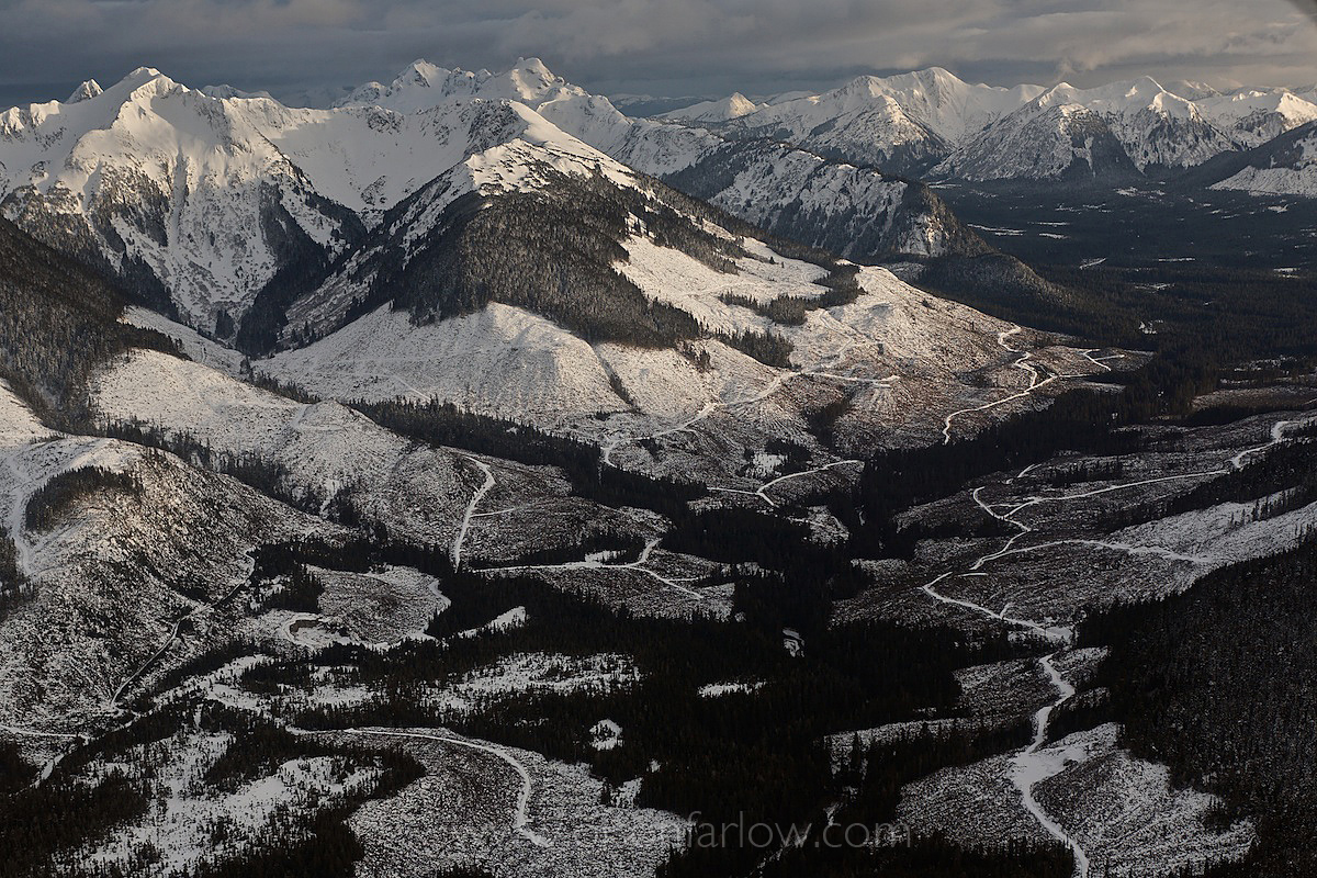 Aerial Of Logging In Winter