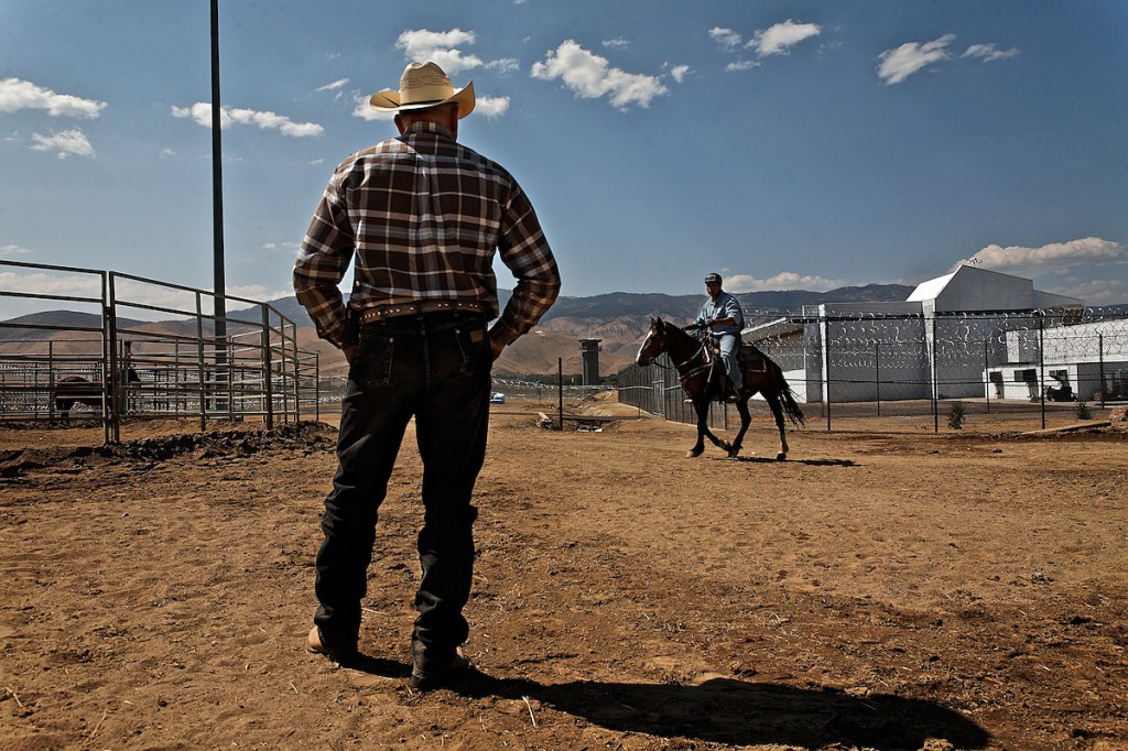 Cowboy horse trainer watches inmate ride wild horse in prison.