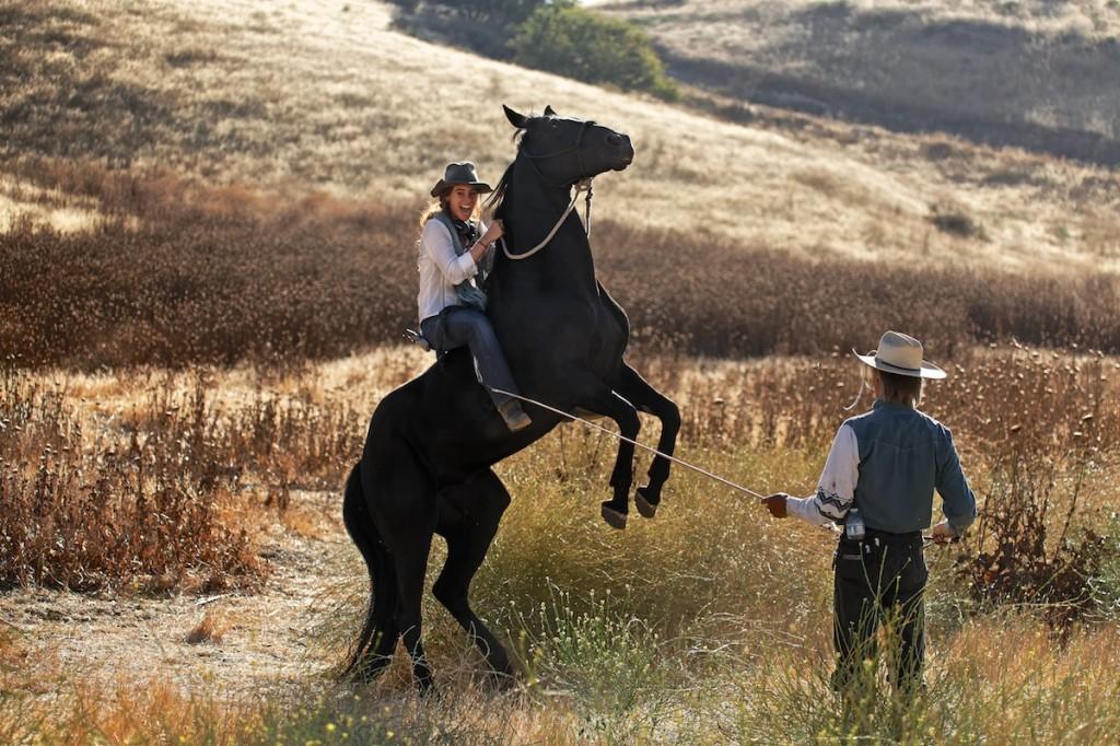 Wild Horses Film